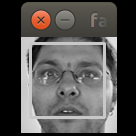 facedetect