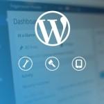 WordPress developer